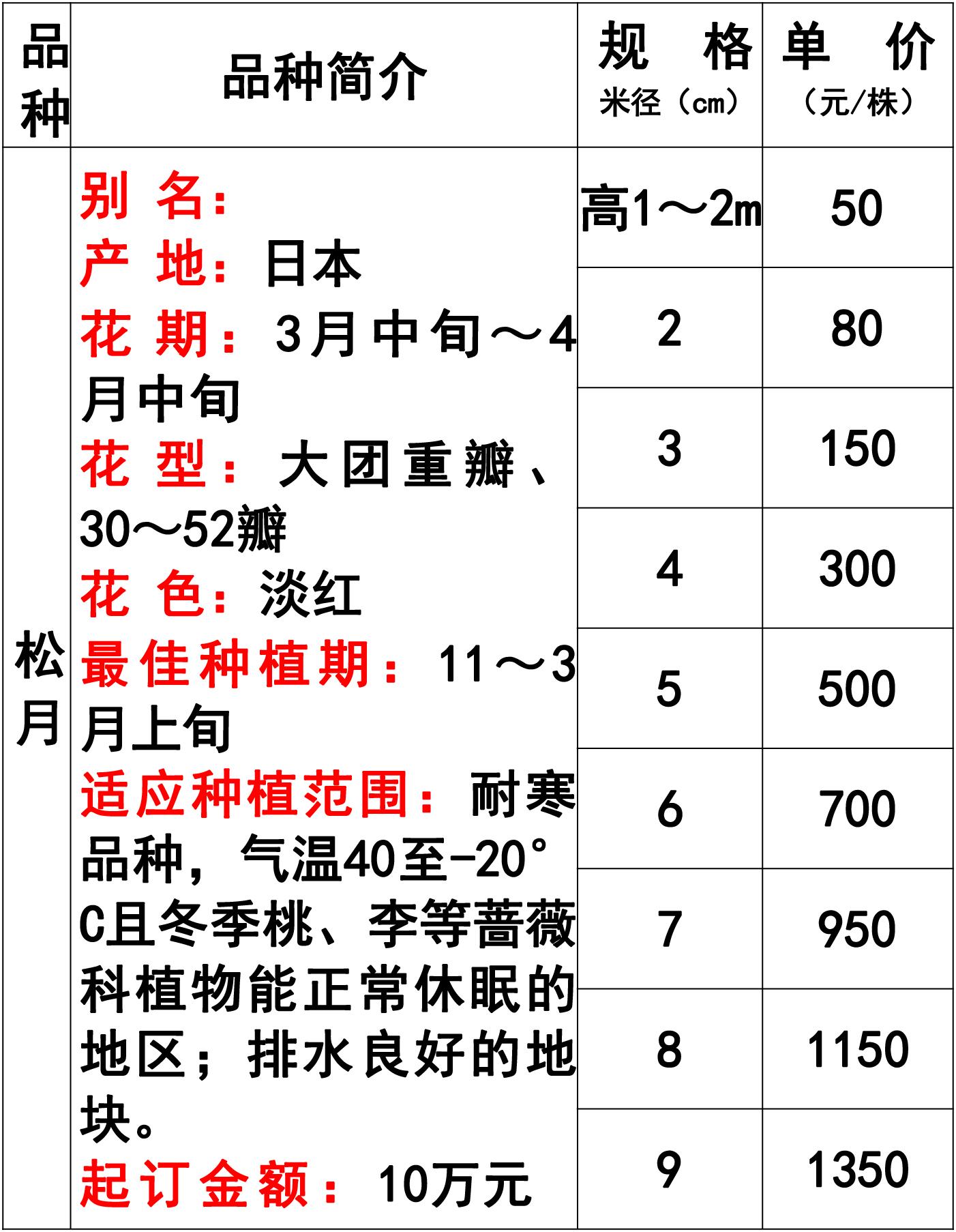 网站价格表-29 副本.jpg