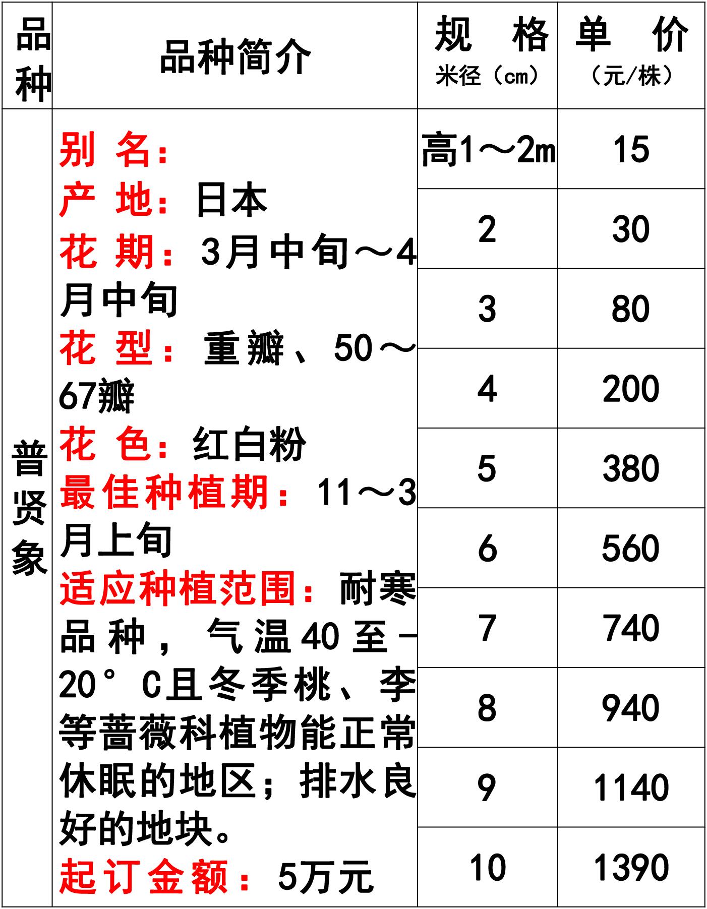 网站价格表-32 副本.jpg