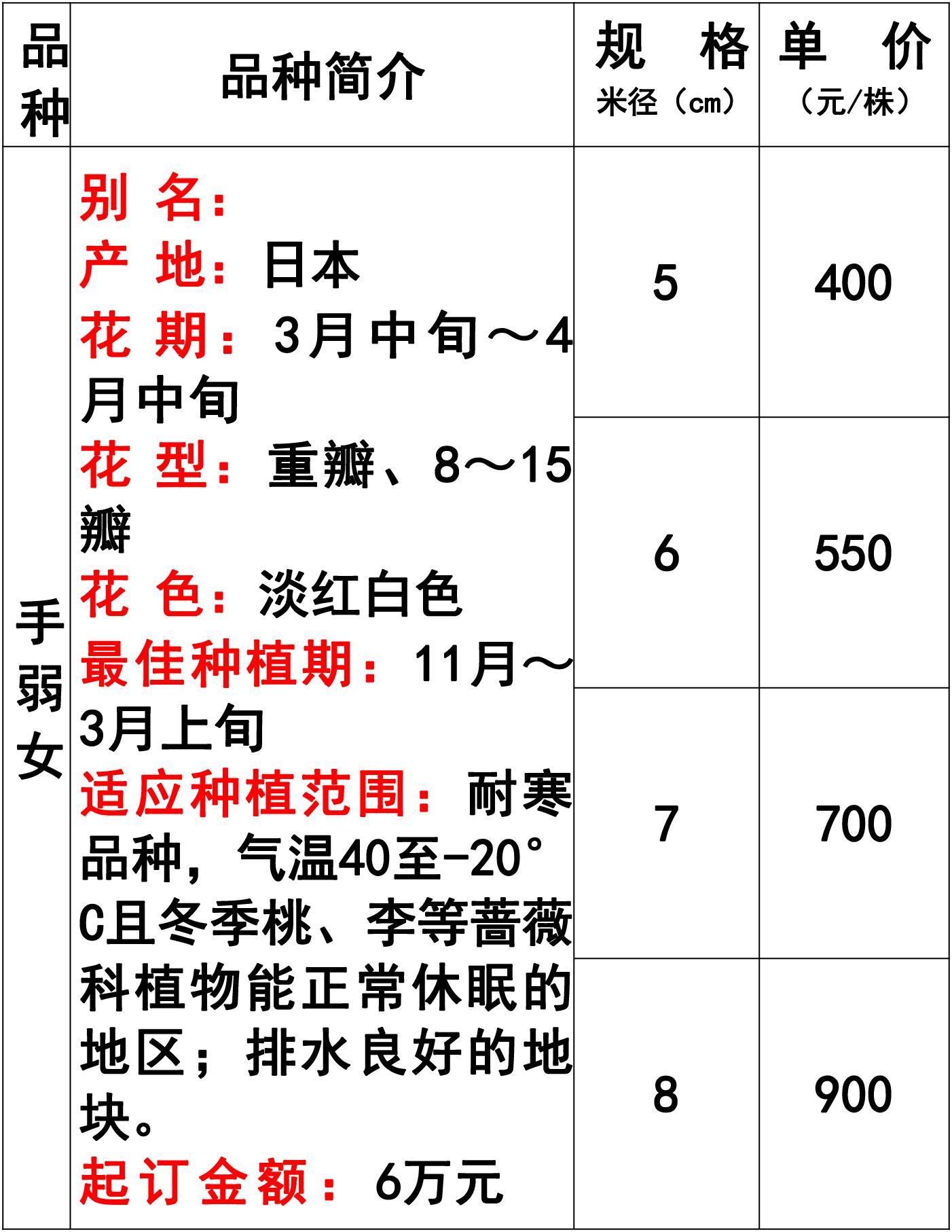 网站价格表-35 副本.jpg