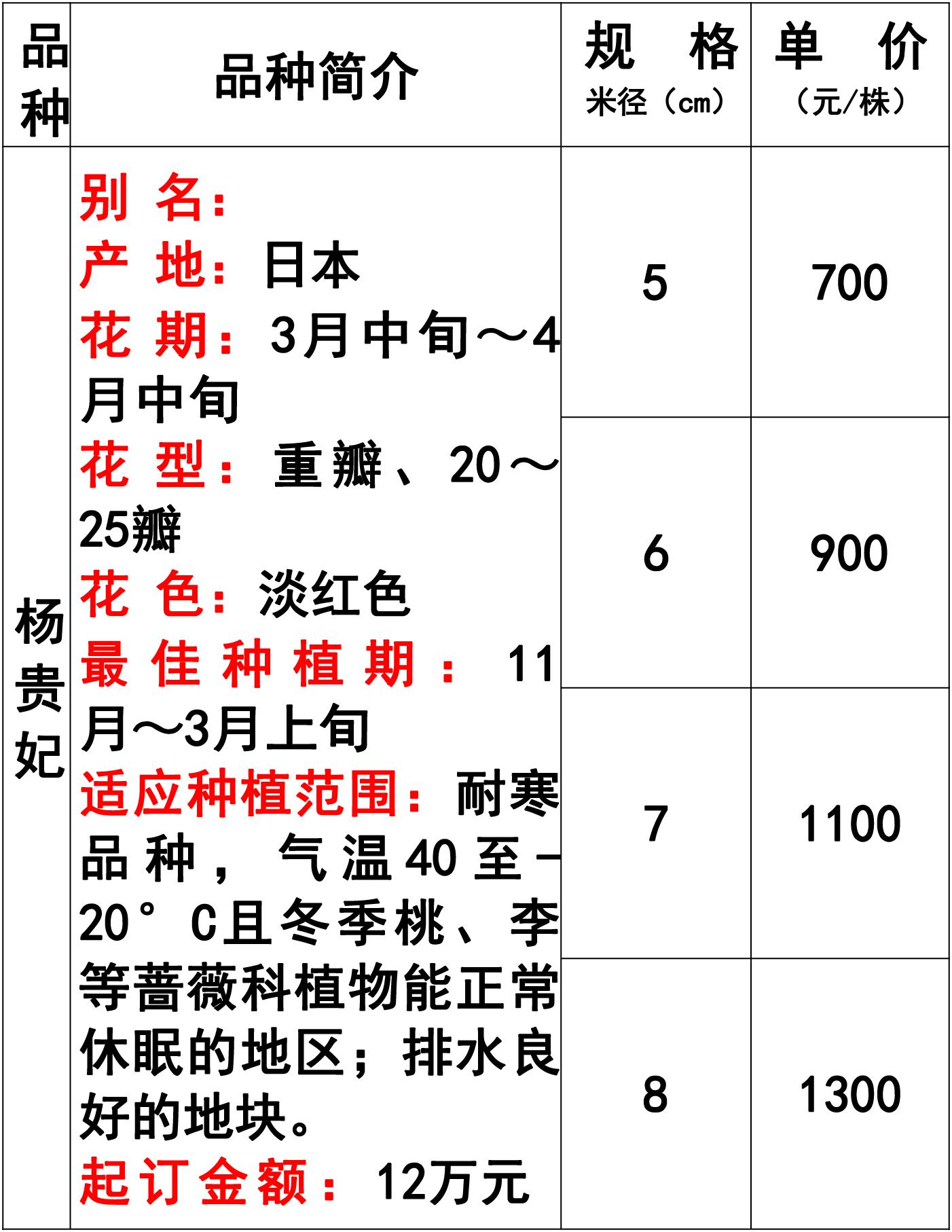 网站价格表-39 副本.jpg