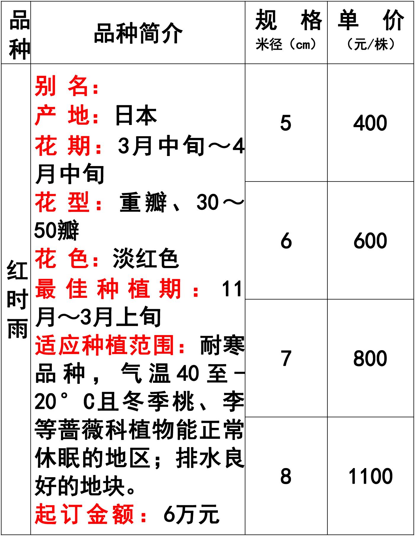 网站价格表-42 副本.jpg