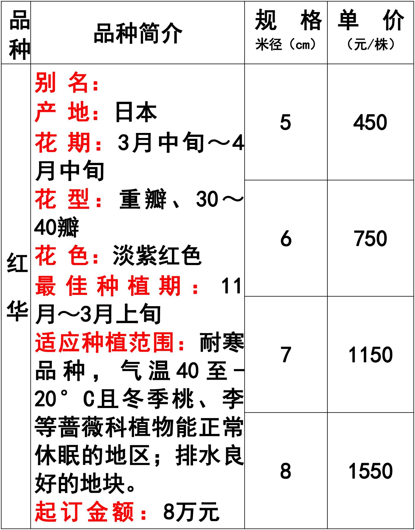 网站价格表-44 副本.jpg