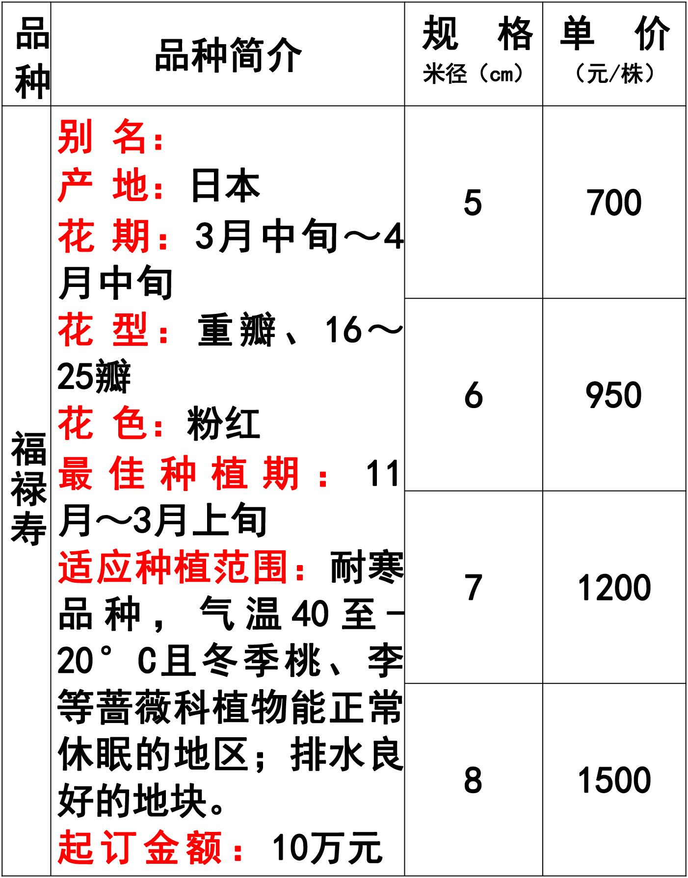 网站价格表-46 副本.jpg