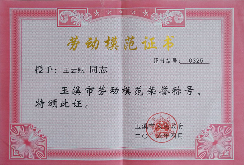 Wang Yunfu Yuxi City Fifth CPPCC Committee Card